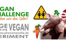 SHOE Lesben Vegan Challenge
